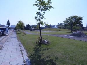 DSCN0929