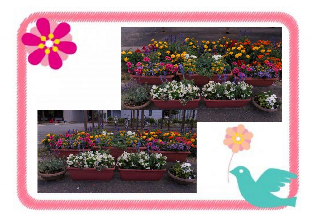 ②花いっぱいコンクール